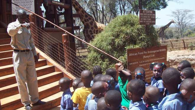 stephen giraffe center